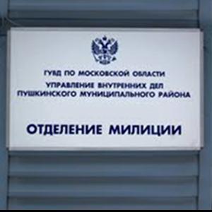 Отделения полиции Пировского